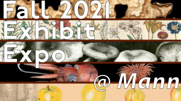 Fall 2021 Exhibit Expo @ Mann
